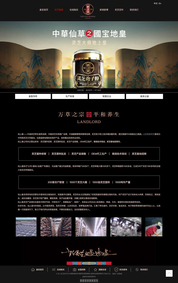 聊城地上皇灵芝官方网站淘宝网店设计制作开发-理想广告设计公司2.jpg