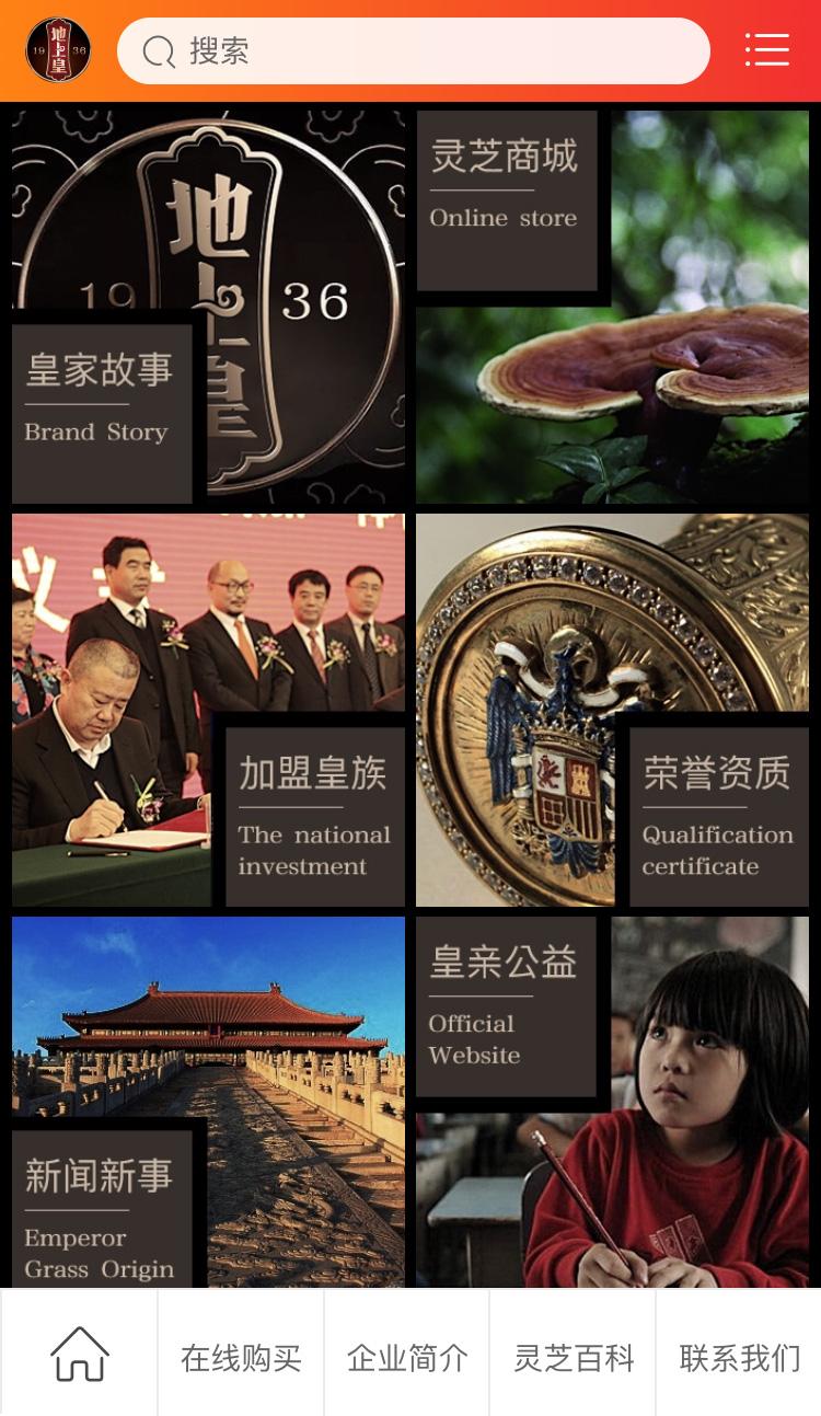 聊城地上皇灵芝官方网站淘宝网店设计制作开发-理想广告设计公司6.jpg