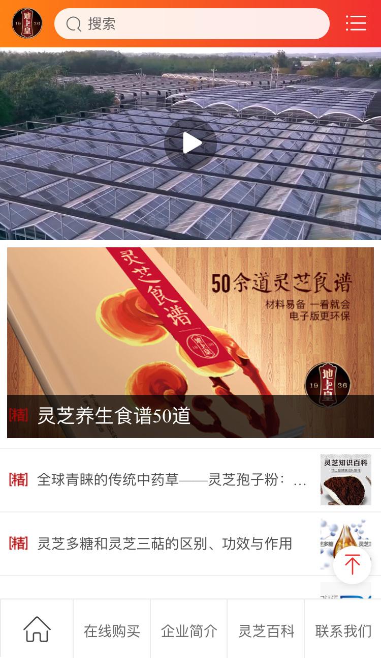 聊城地上皇灵芝官方网站淘宝网店设计制作开发-理想广告设计公司7.jpg